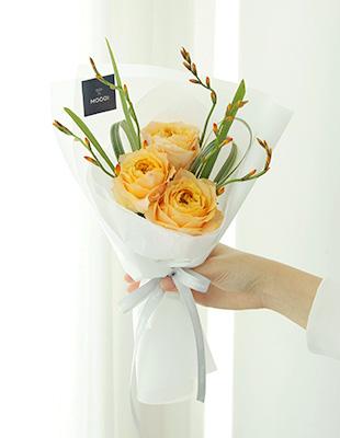 카라루나 장미