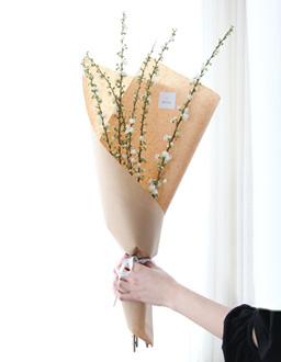 귀여운 봄꽃 옥매화